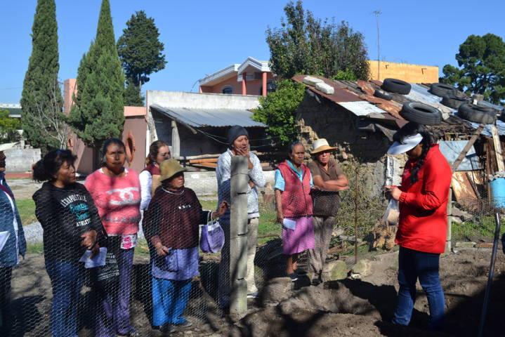 El DIF Estatal y Municipal promueven en Tlaltelulco los huertos familiares