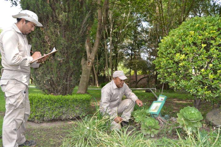 Realiza Jardín botánico estudio de conservación de biodiversidad