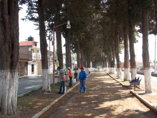 Implementa Nanacamilpa  acciones de mejora urbana por avistamiento de Luciérnagas