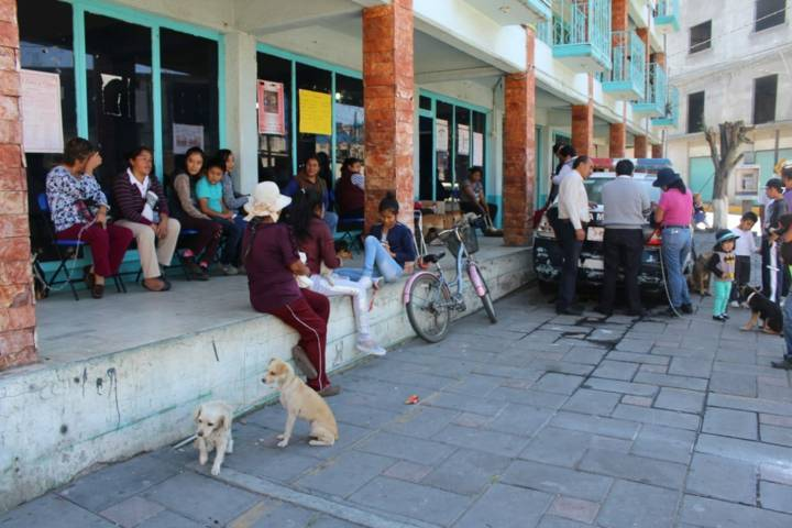 Ayuntamiento fomenta la cultura de la esterilización canina y felina