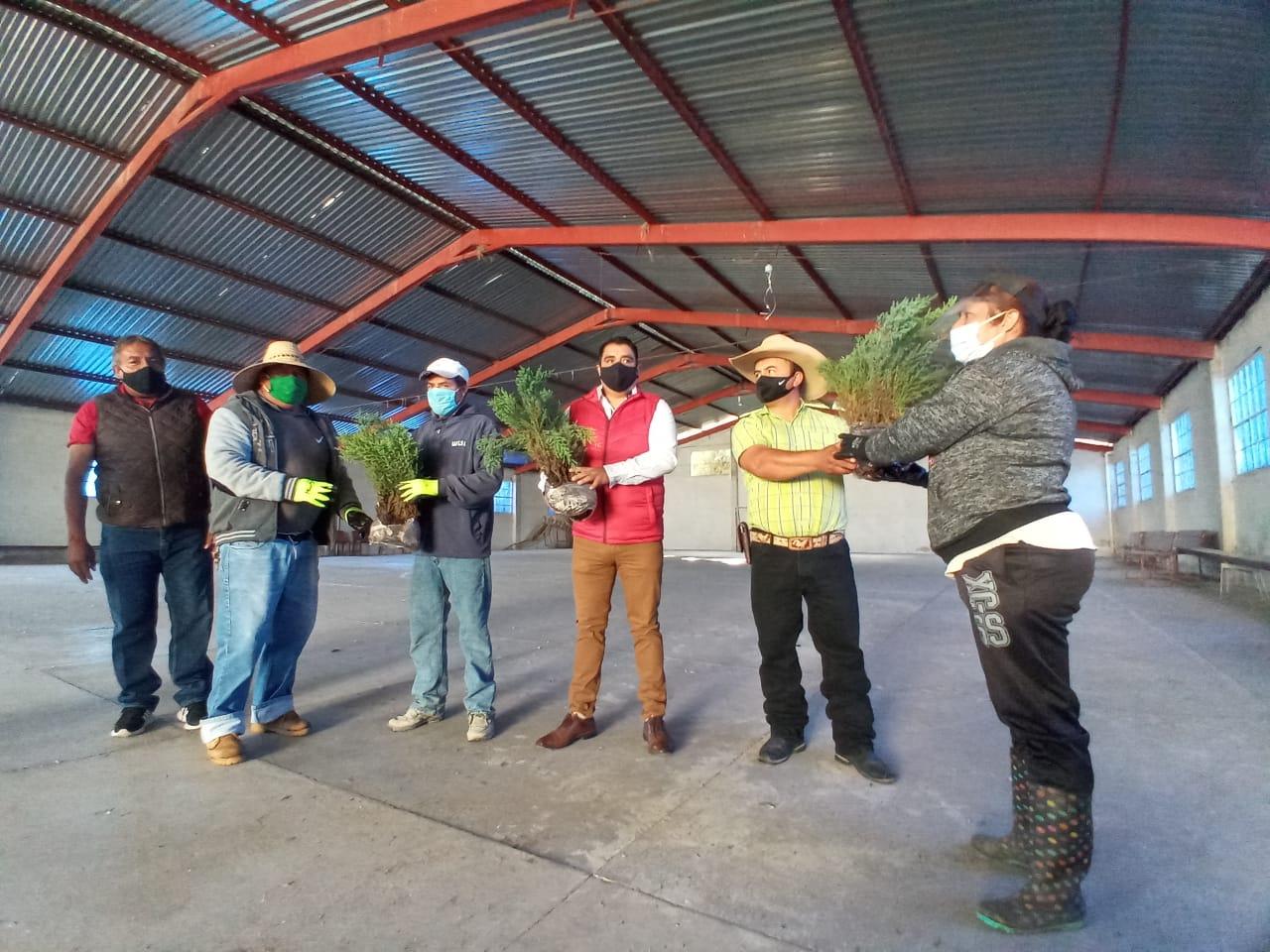 Ponen en marcha programa de reforestación y empleo en Atotonilco