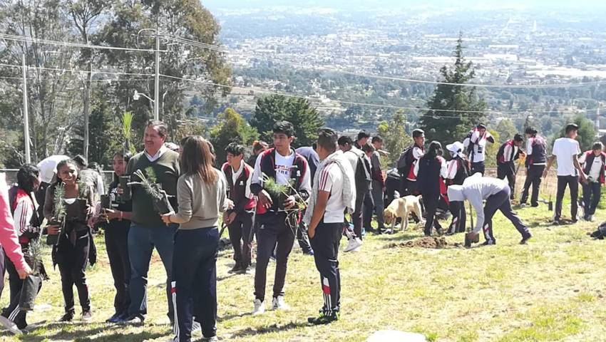 Realizan campaña de reforestación en Cobat 24 de Tizatlán