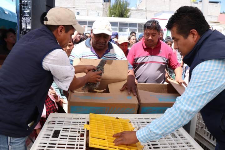 Alcalde contribuye con la economía familiar entregando paquetes de animales