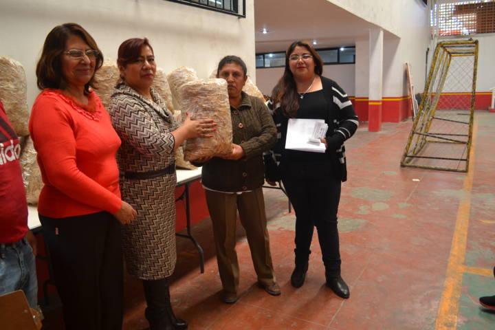 El SMDIF  de Tlaltelulco entregó producción de Hongo Seta