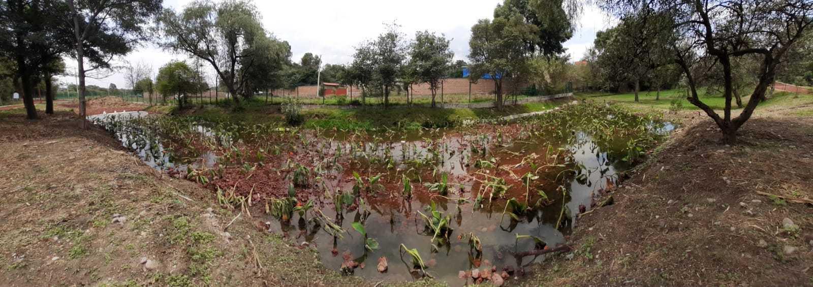 Realiza CGE trabajos de rehabilitación y embellecimiento en el Jardín Botánico Tizatlán