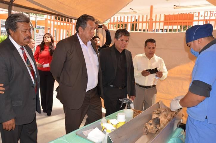 Mañana inicia Semana de Esterilización de Perros y Gatos en Tlaxco