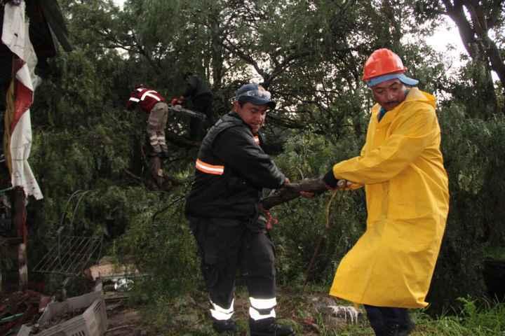 Solo daños materiales reporta Totolac luego de fuertes rachas de viento