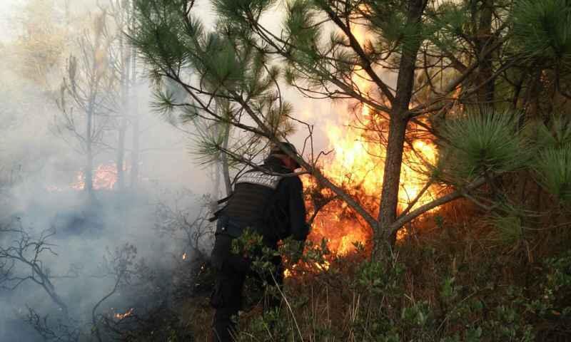 Se suman al esfuerzo para combatir incendio en Quimicho