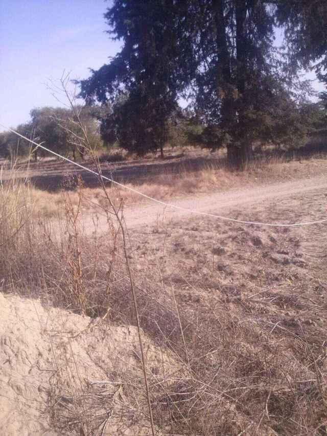 Desinteresa a autoridades cable de alta tensión tirado en vía pública