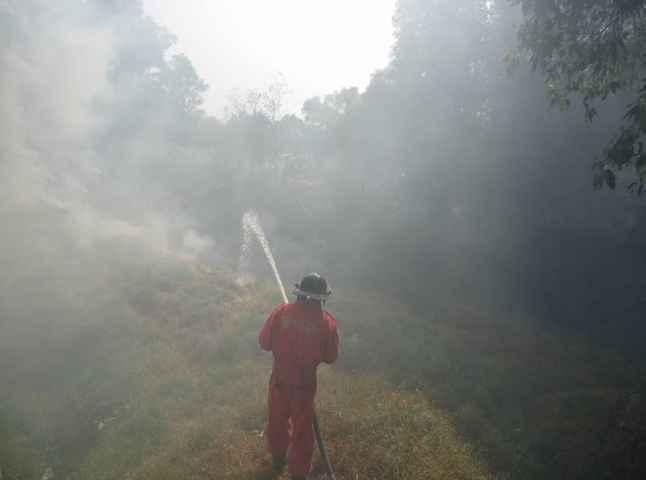 Sofocan incendio en límites de Totolac y Panotla