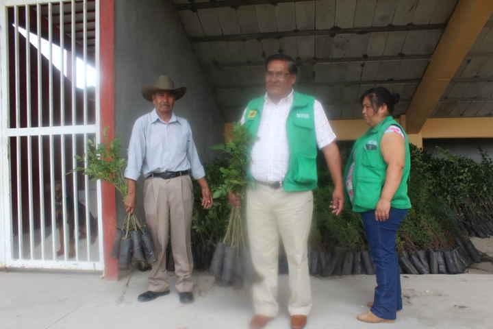 Nativitas se suma al programa de reforestación: alcalde