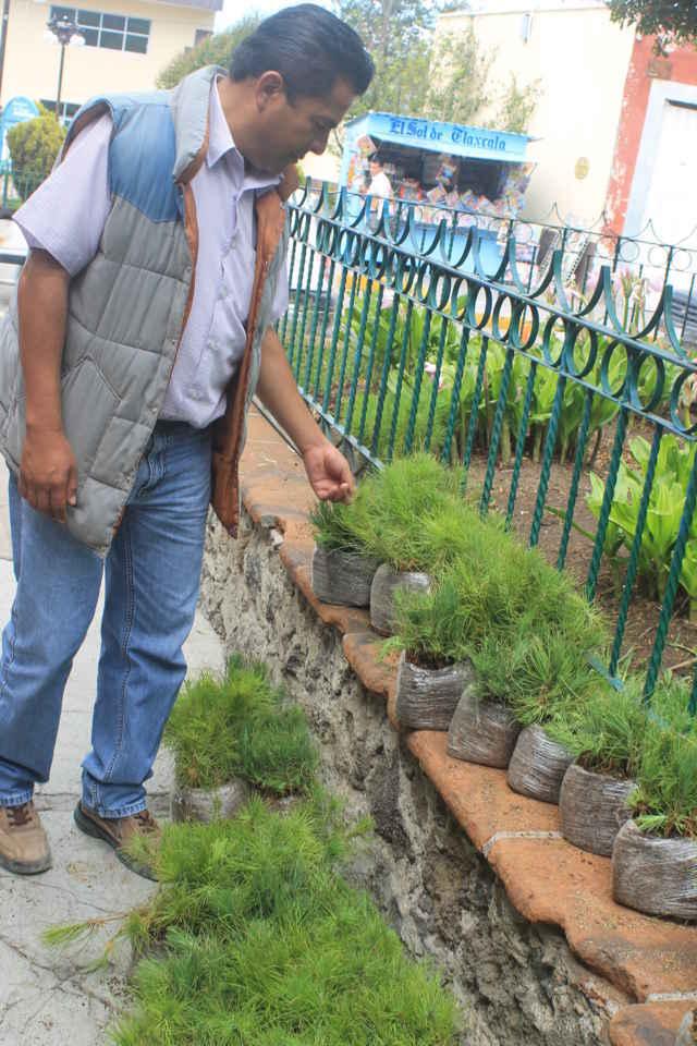 10 mil árboles son entregados a los ciudadanos de Tetla