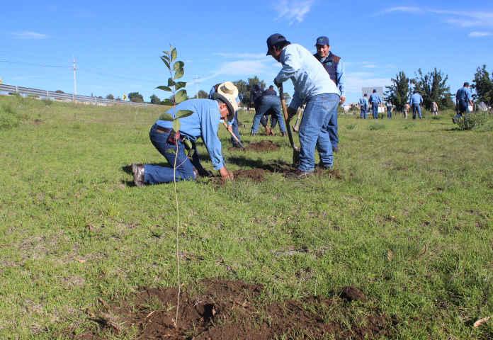 Conmemoran en Huamantla el Día Mundial del Árbol