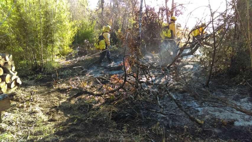 Combaten tlaxcaltecas enviados a Chile seis incendios forestales