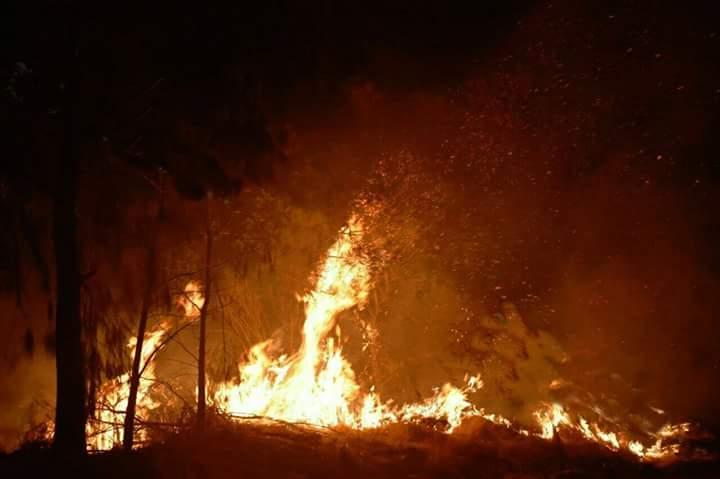 Incendio forestal en la localidad de Tizatlan se reporta