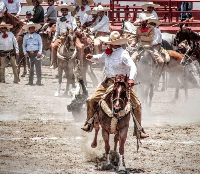 Cihuapitl, Álamos, Cesar, Armando, Durazno e Infantiles se coronan en Campeonato Estatal