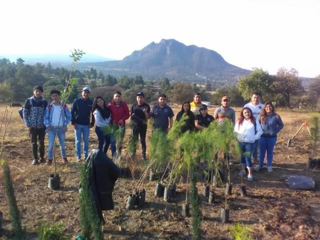 Fomentamos el cuidado del medio ambiente y la cultura de plantar un árbol: alcalde