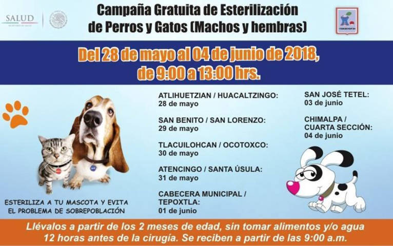 Del 28 de mayo al 4 junio campaña gratuita de esterilización de mascotas