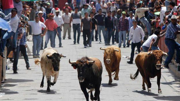Soltarán 25 toros en la tradicional Huamantlada