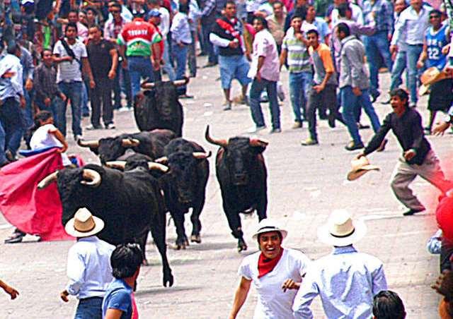 Reducirán este año el número de toros de la Huamantlada