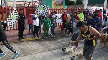 En Apizaco se llevará a cabo el paseo de mascotas