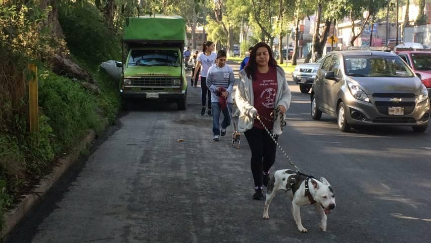 """Invita IDET a evento """"Corre Camina O Trota Con Tu Mascota"""""""