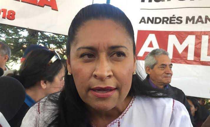 Por andar en la grilla; senadora desatiende Reforma de AMLO