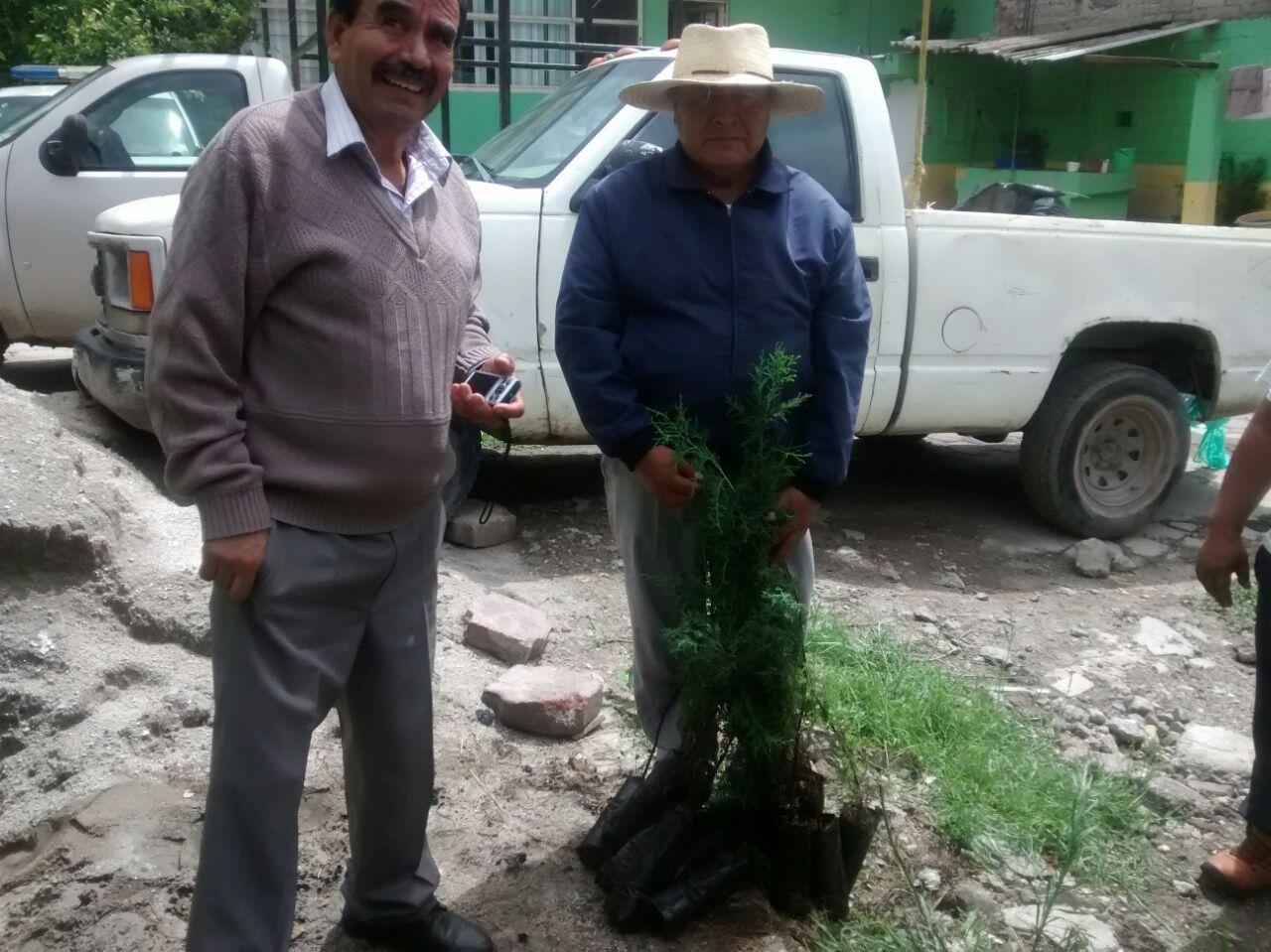 Inician entrega de árboles para reforestar espacios públicos