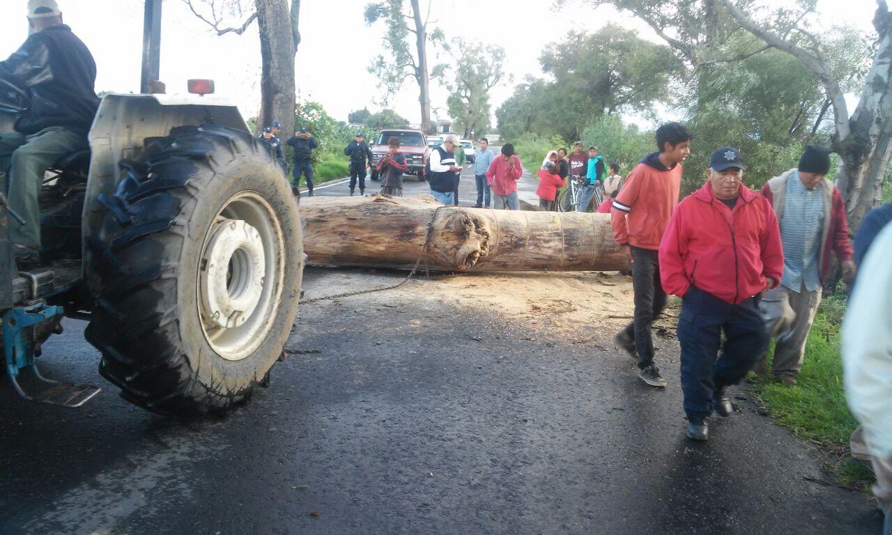 Árbol caído por fuerte lluvia provoca cierre de carretera en Nativitas