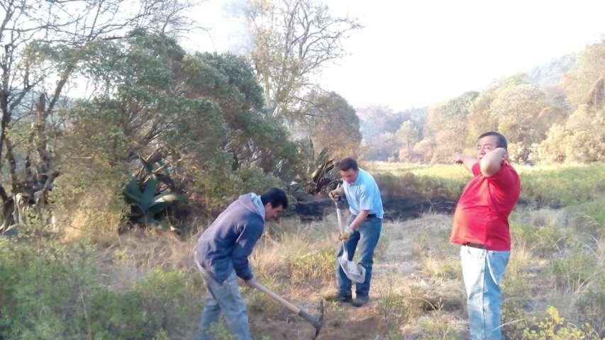 Refuerzan brigada rural forestal y PC Municipal combate a indencio en Tlaxco