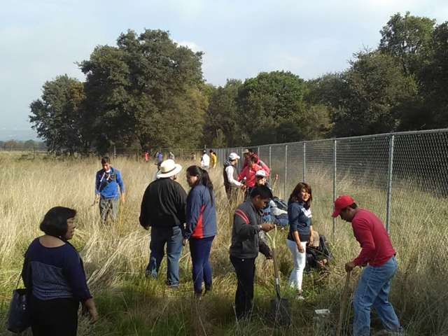 Inician acciones en pro de la reforestación en Santa Cruz Tlaxcala