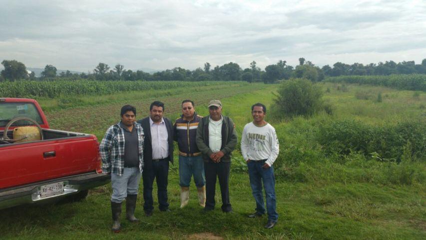 """""""Sigue firme el compromiso para apoyar al sector agrícola"""": Fernández Nieves"""
