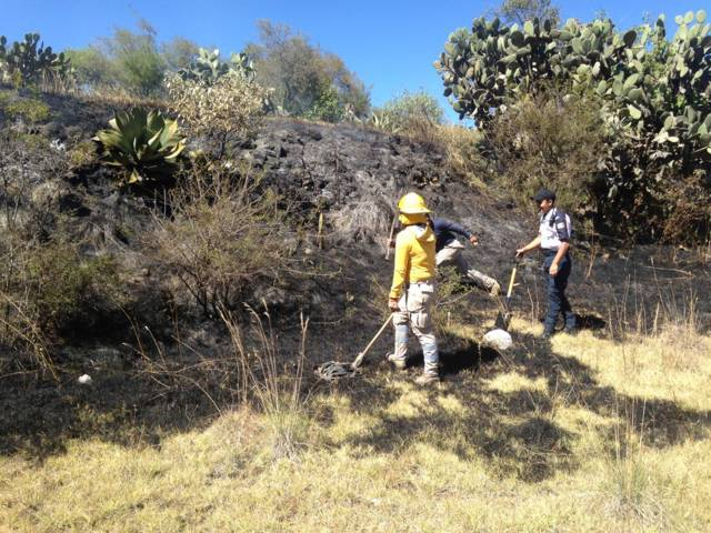 Sofoca Protección Civil Municipal incendio en los cerros blancos