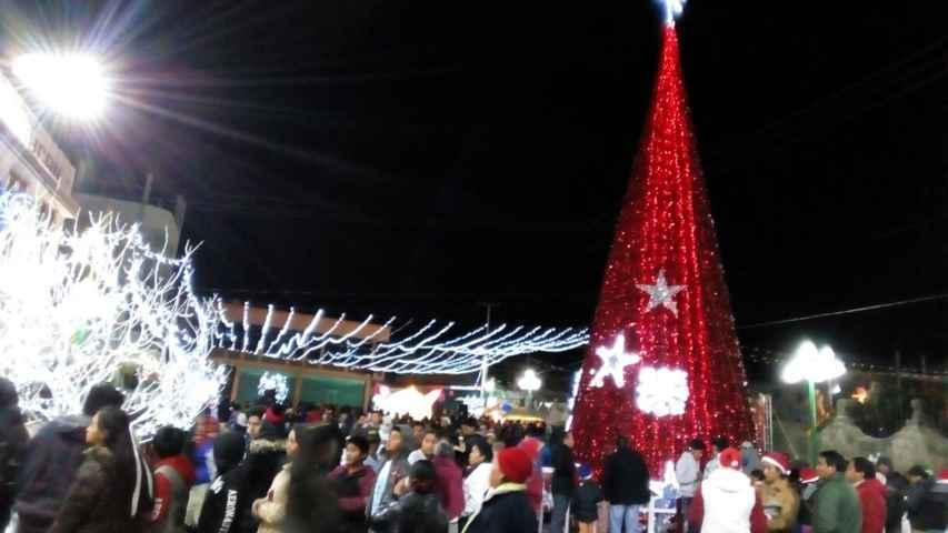 Mendieta Lira realizó el encendido del Árbol de Navidad