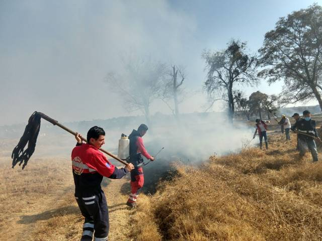 Incendio arrasa pastizales en Panotla