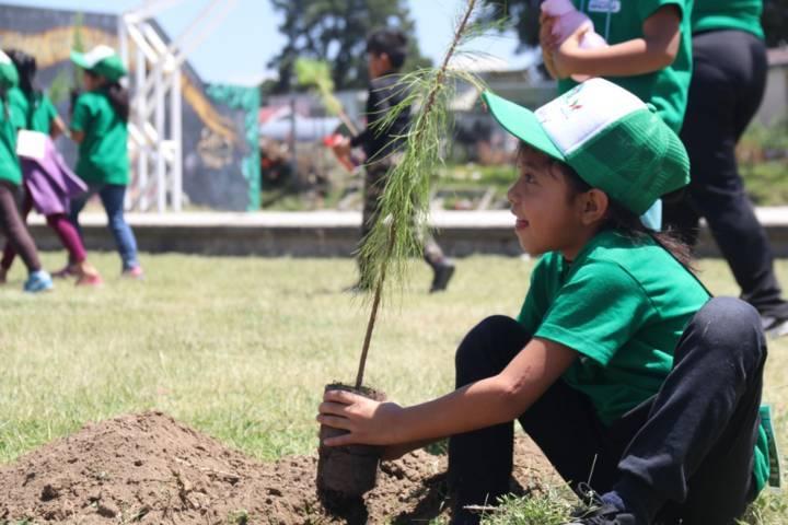 Siembran niños de curso de verano árboles en Papalotla