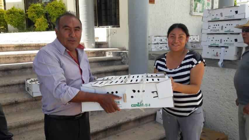 Desarrollo Agropecuario Tepetitla entrega paquetes de especies menores