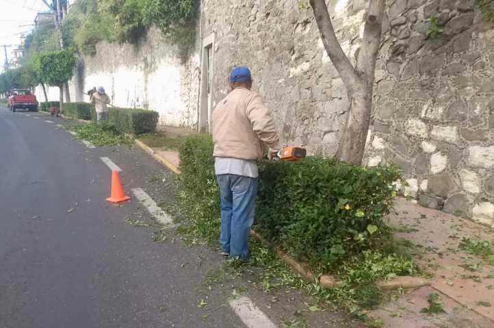 Realiza Ayuntamiento limpieza constante en áreas verdes