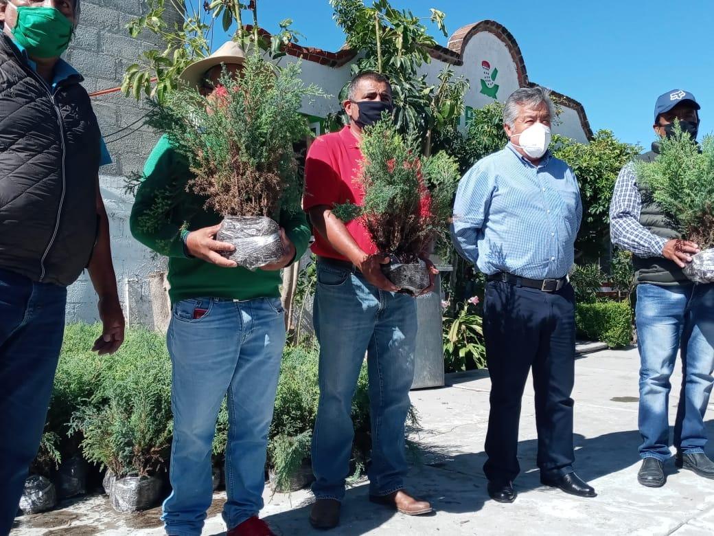 El alcalde de Ixtacuixtla Rafael Zambrano entrega 10 mil árboles a 5 comunidades