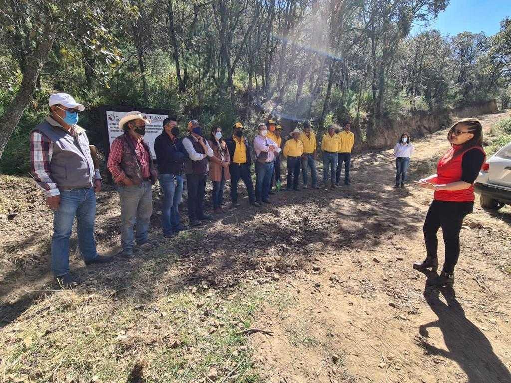 Tlaxco, único municipio en Tlaxcala que protege terrenos forestales