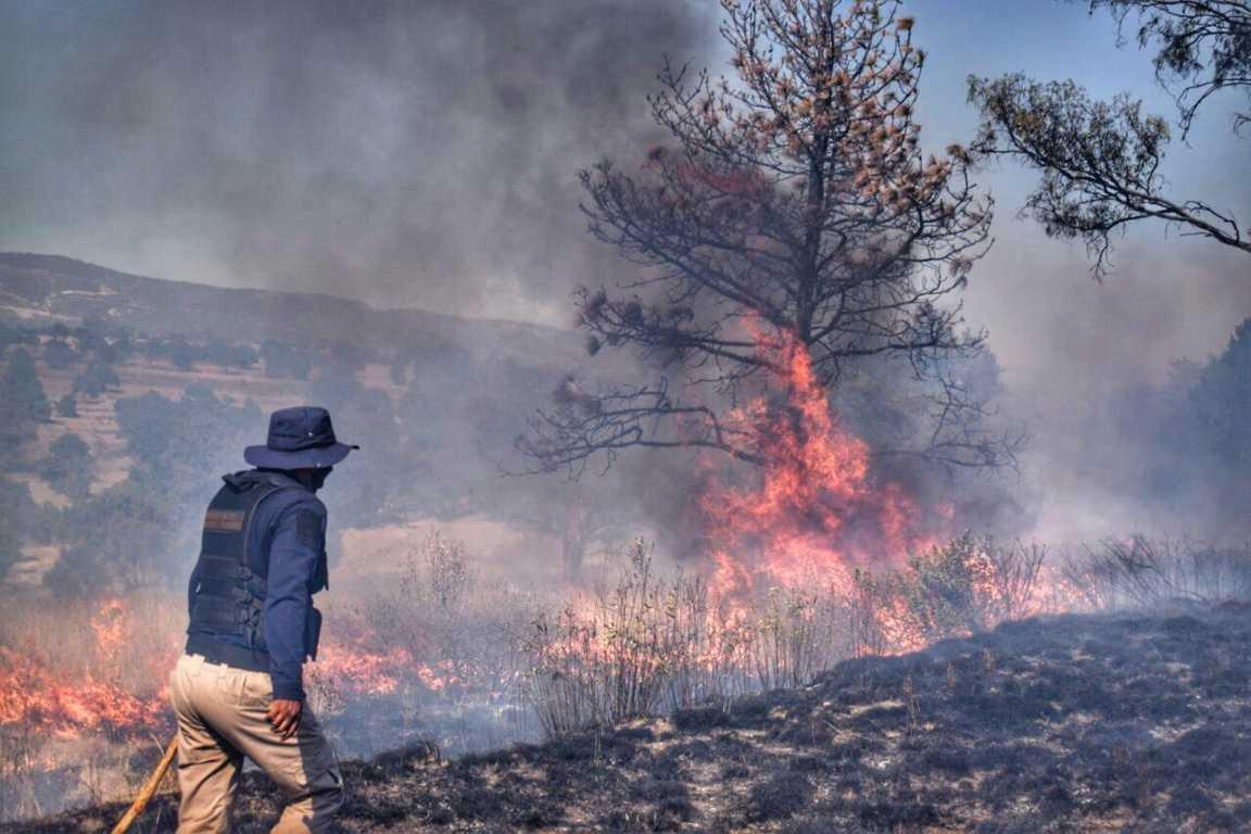 Ayuntamiento de Nativitas ha logrado sofocar 65 incendios