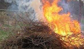 Evitar quemas agrícolas para no dañar la naturaleza, piden en Tecopilco