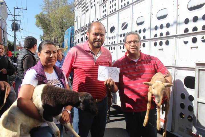 Productores de Santa Cruz reciben 253 corderos para engorda