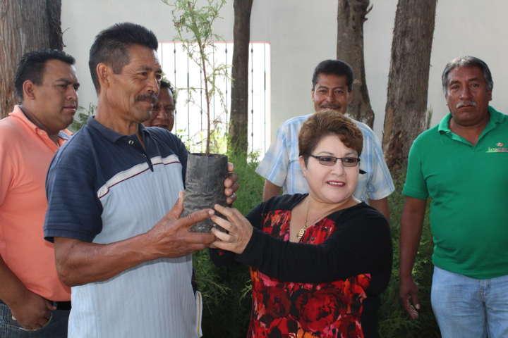 Ayuntamiento de Ixtacuixtla se suma a la reforestación con 2 mil arboles