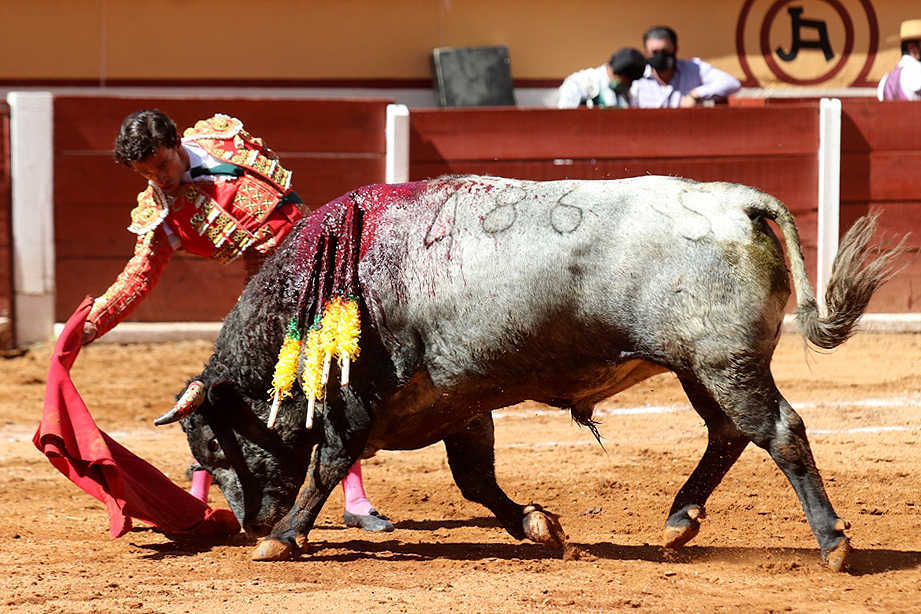 Se realiza primera corrida de toros virtual en Tlaxcala