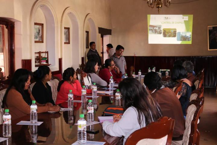 Ayuntamiento de Chiautempan convierte plaga en ingresos para los hogares