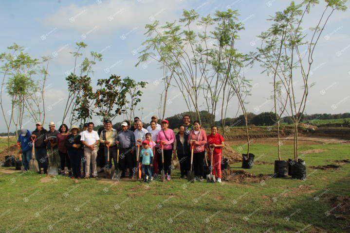 Alcalde contribuye al mejoramiento del medio ambiente sembrando árboles