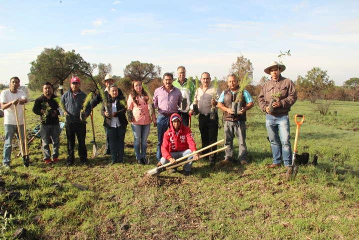 Alcalde inicia jornada de reforestación en terrenos del municipio
