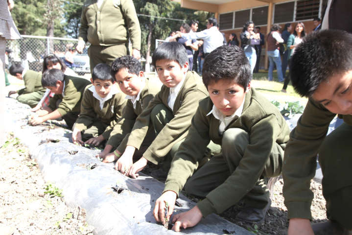 Inician 150 escuelas del Estado cosecha de hortalizas
