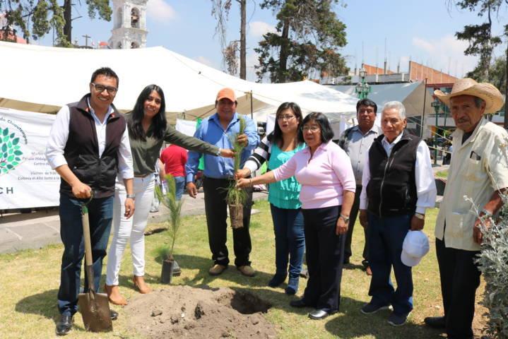 Reimpulsan reforestación en Chiautempan durante el Día Mundial del Medio Ambiente